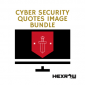 HEXROW cyber security quotes