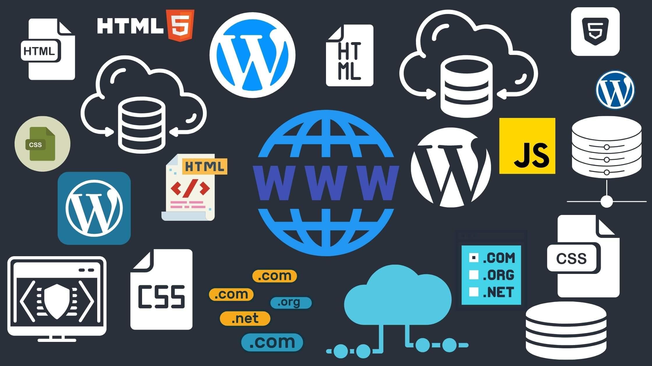 Hosting Website Development CMS Domain