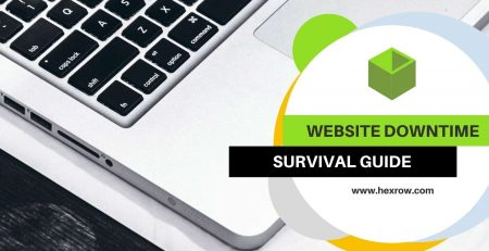 Website Downtime Survival Guide